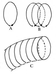 second diagram test 1